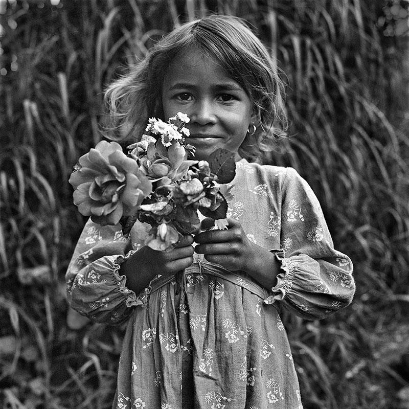 Les fleurs à la maîtresse
