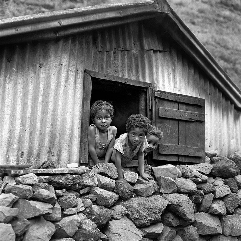 Les trois enfants à la fenêtre – Les Orangers