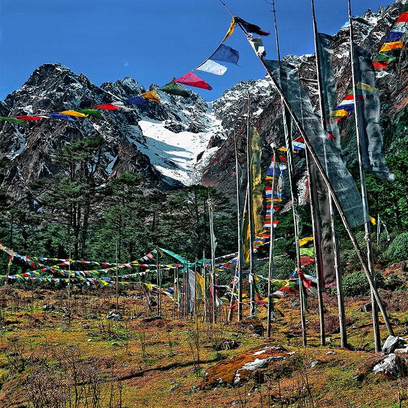 Drapeaux dans la Yumtang Valley - Sikkim (Inde)