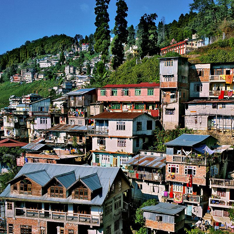 Darjeeling, 2042 m, à flanc de colline – Inde