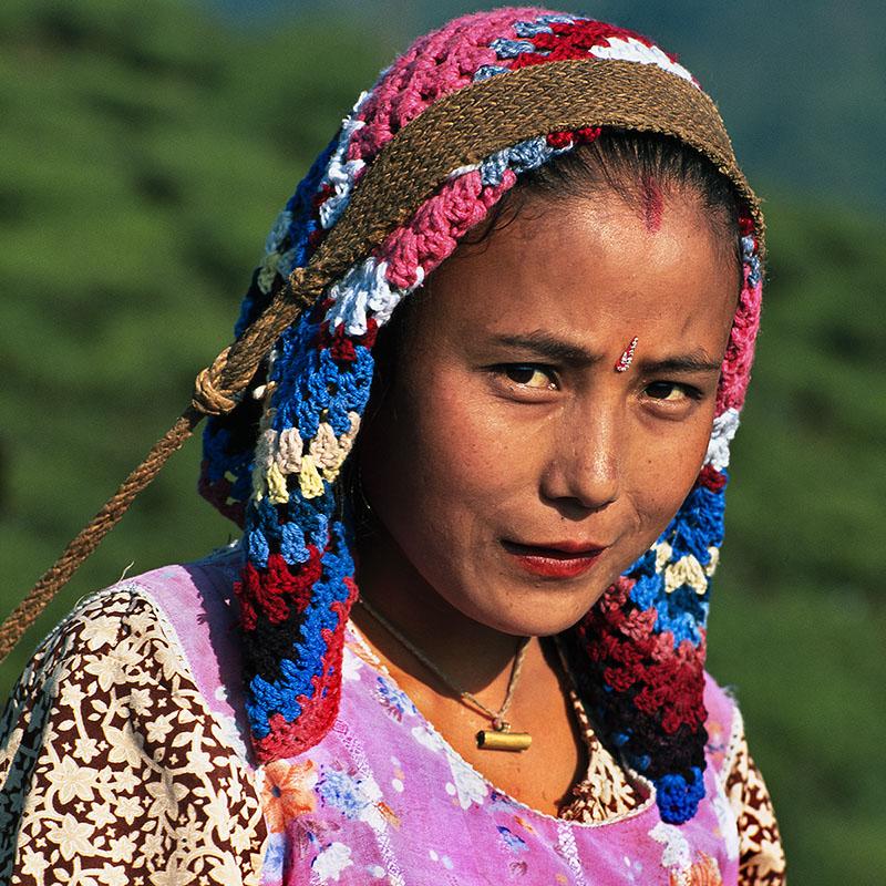 Portrait pendant la cueillette du thé - Darjeeling (Inde)