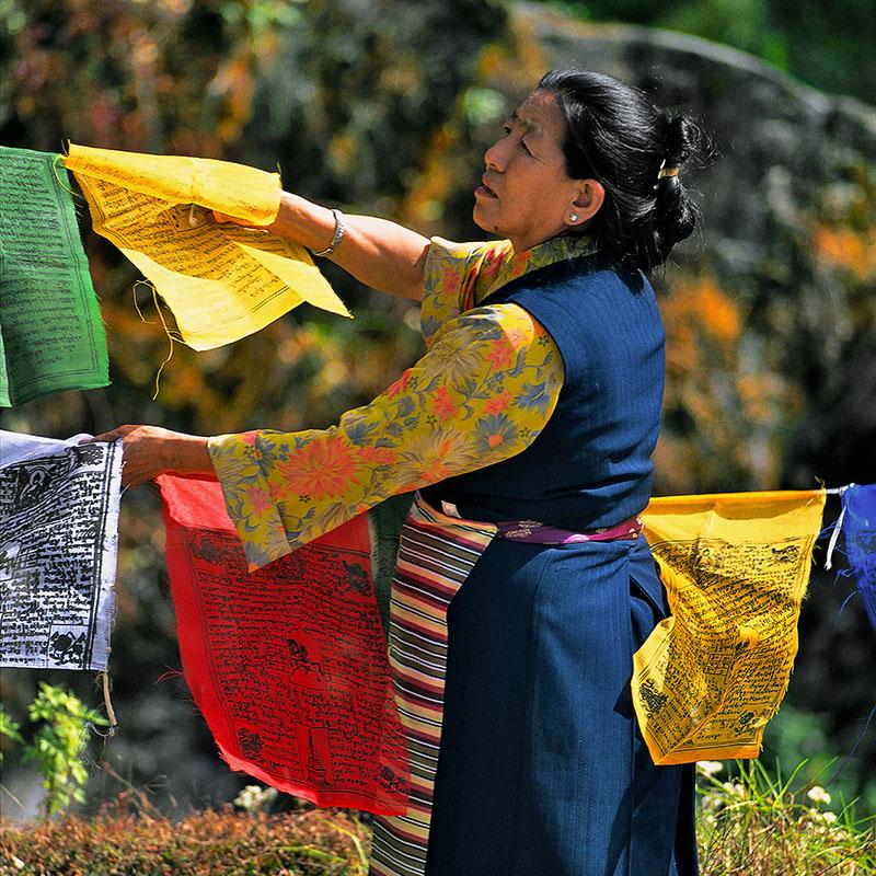 Installation de guirlandes de drapeaux - Gangtok, Sikkim (Inde)